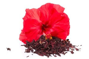 Hibiscus tea and flower isolated on a white background