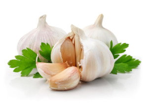 Garlic Cures